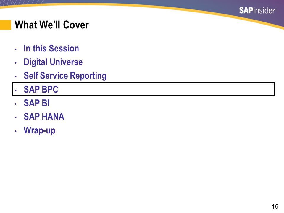 SAP Business Planning and Consolidation Self Service