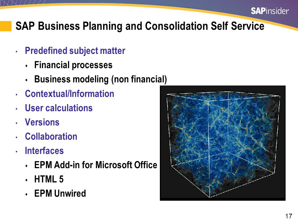 SAP BPC Self Service: EPM Add-In for Microsoft Office