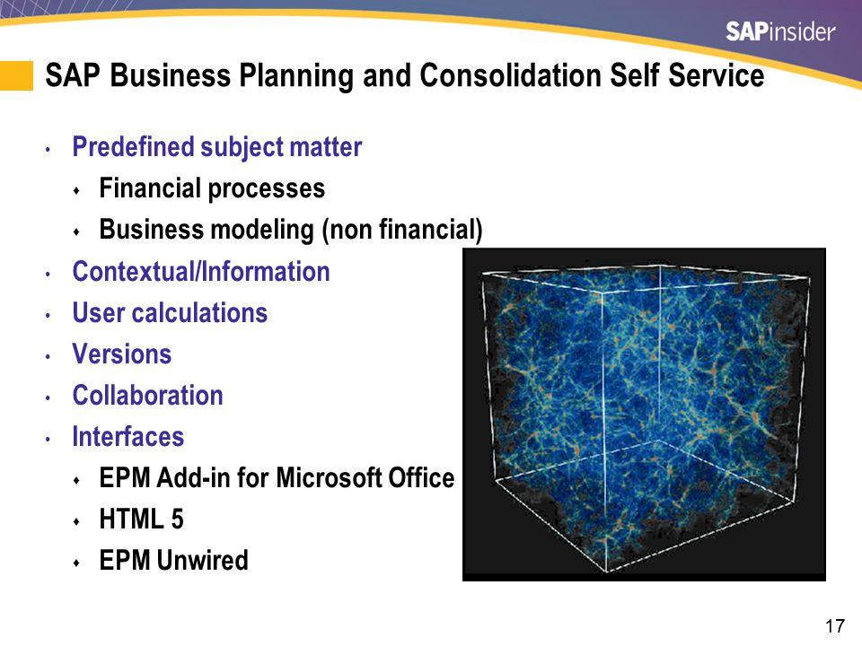 SAP BPC Self Service: EPM Add-In for Microsoft Office