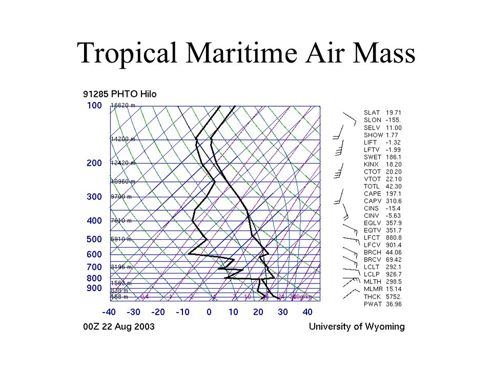 Tropical Maritime Air Mass