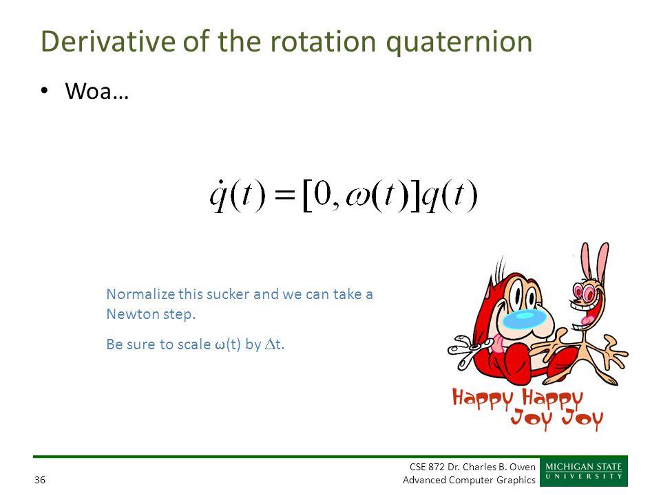 Derivative of the rotation quaternion