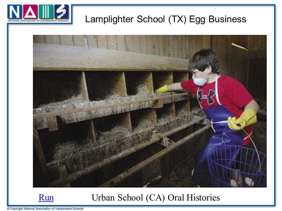 Lamplighter School (TX) Egg Business
