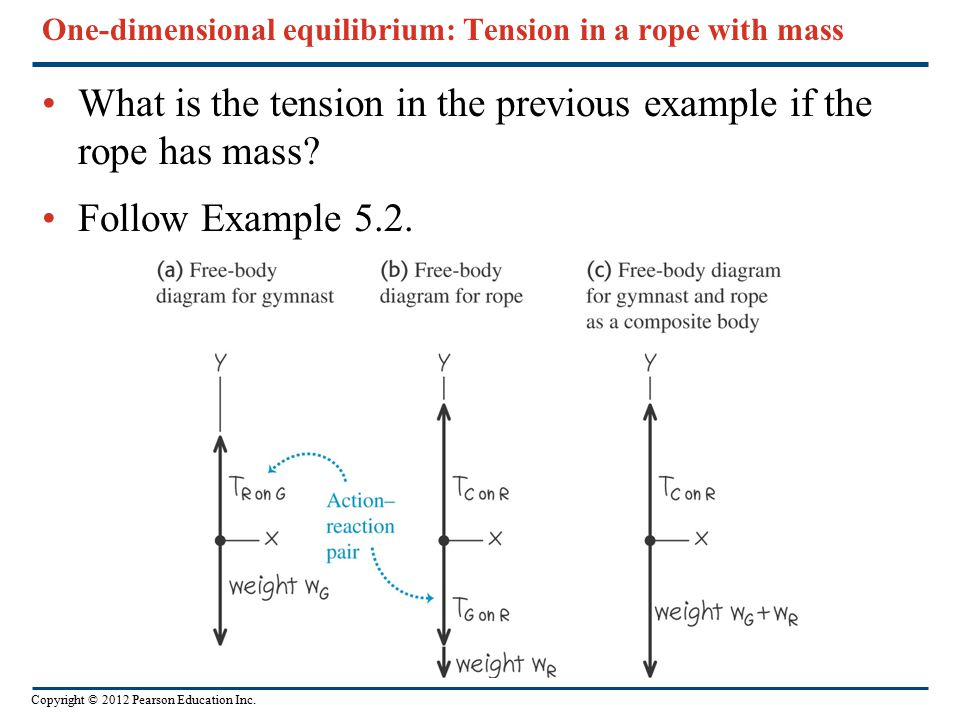 One-dimensional equilibrium: Tension in a rope with mass