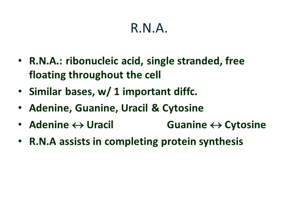 R.N.A. R.N.A.: ribonucleic acid, single stranded, free floating throughout the cell. Similar bases, w/ 1 important diffc.