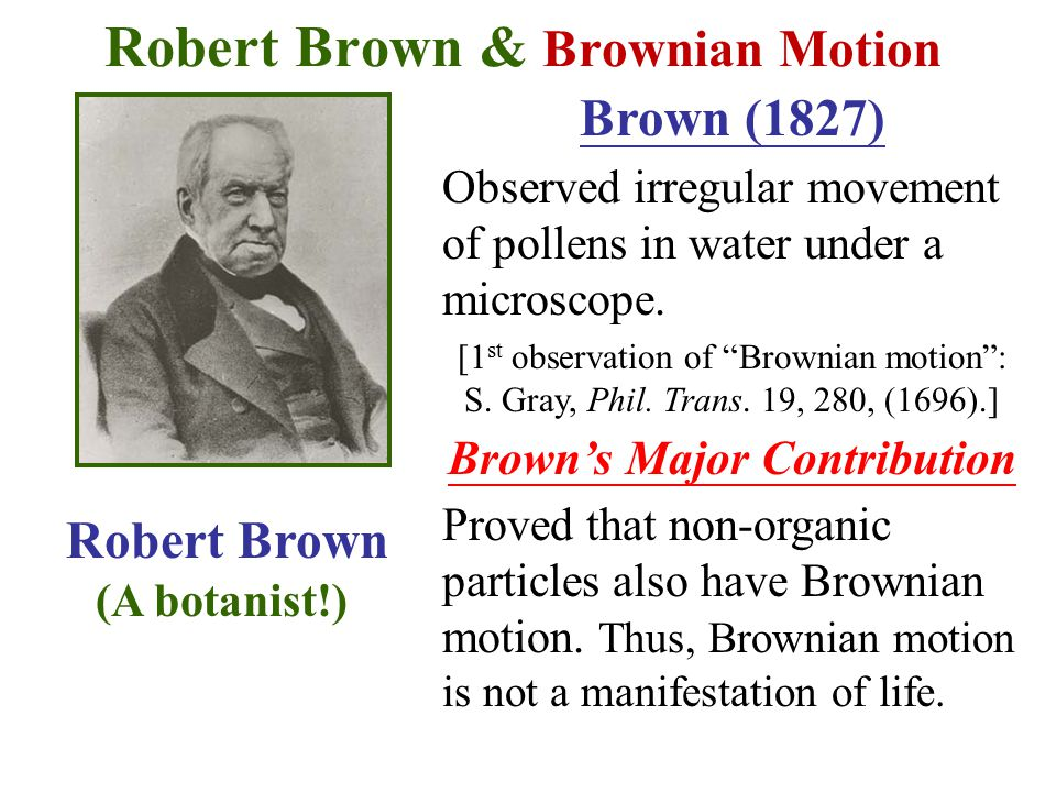 Robert Brown & Brownian Motion