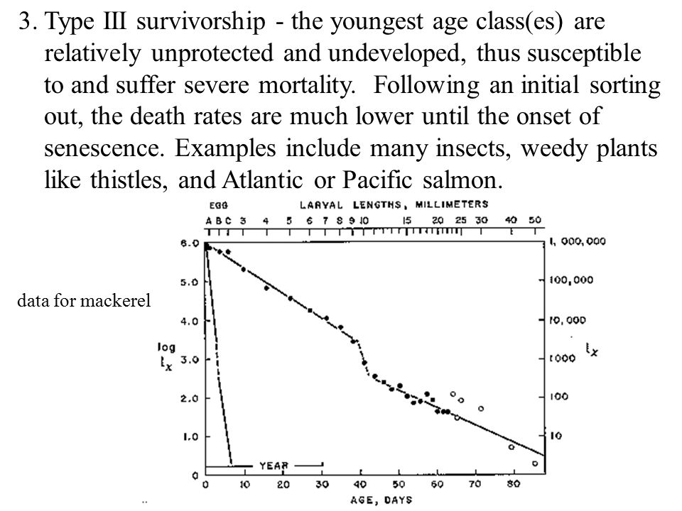 Type III survivorship - the youngest age class(es) are