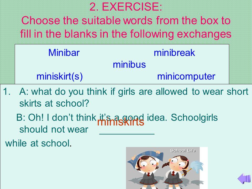 miniskirt(s) minicomputer