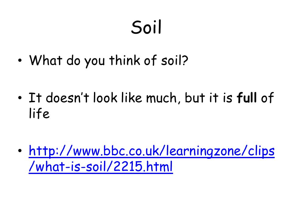 Soil What do you think of soil