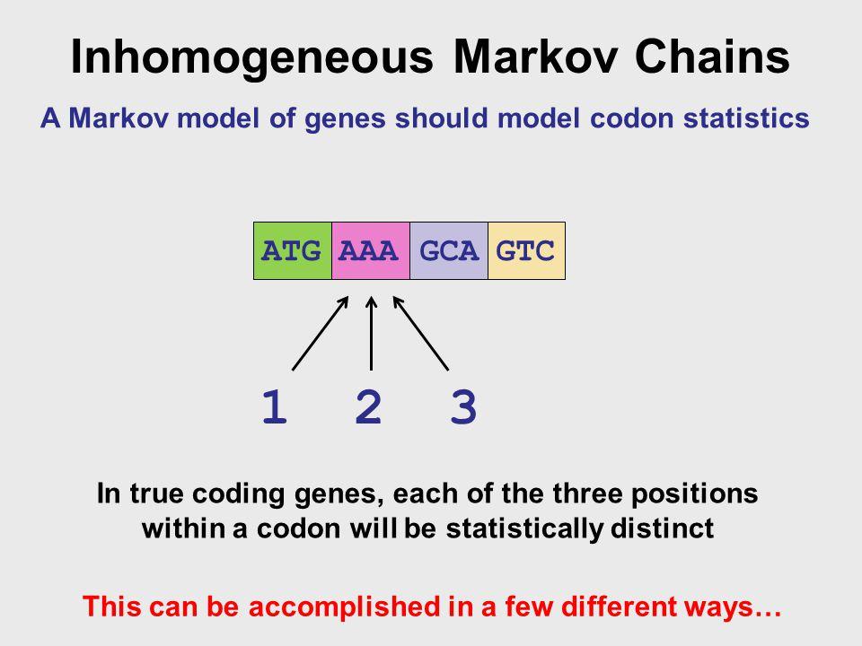 1 2 3 Inhomogeneous Markov Chains ATG GTC AAA GCA