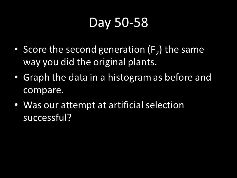 Day 50-58 Score the second generation (F2) the same way you did the original plants. Graph the data in a histogram as before and compare.