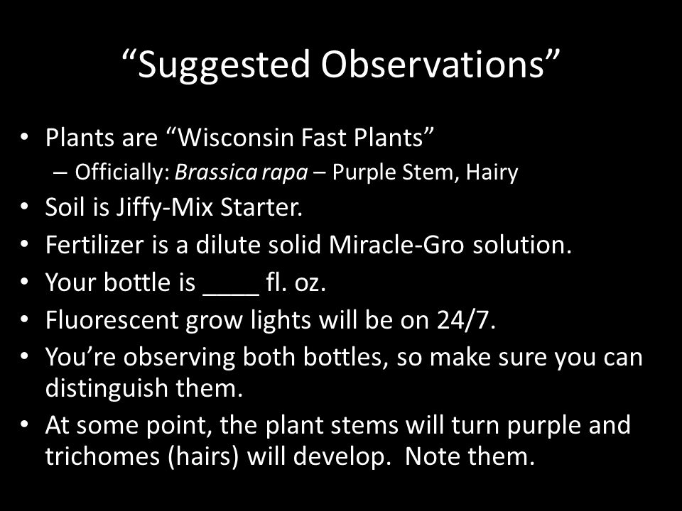 Suggested Observations