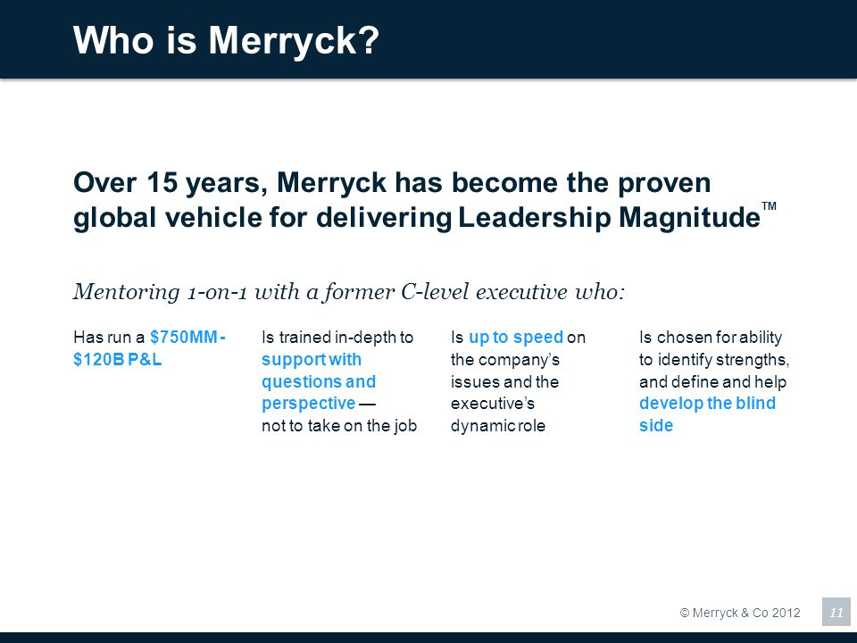 Who is Merryck Over 15 years, Merryck has become the proven global vehicle for delivering Leadership MagnitudeTM.