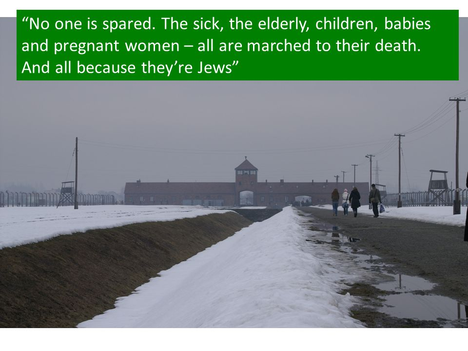 No one is spared. The sick, the elderly, children, babies and pregnant women – all are marched to their death. And all because they're Jews