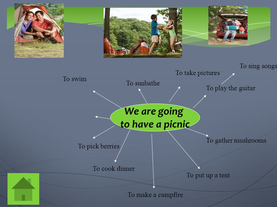 We are going to have a picnic