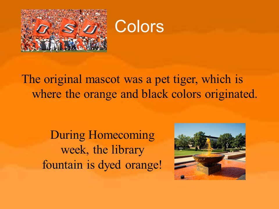 During Homecoming week, the library fountain is dyed orange!