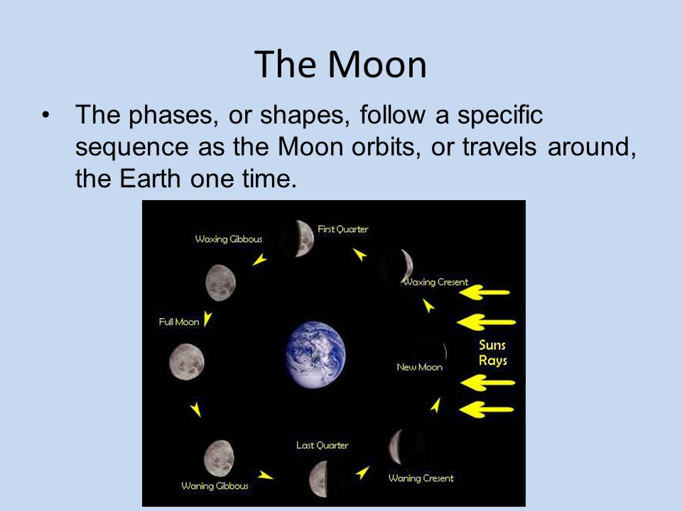The Moon The phases, or shapes, follow a specific sequence as the Moon orbits, or travels around, the Earth one time.
