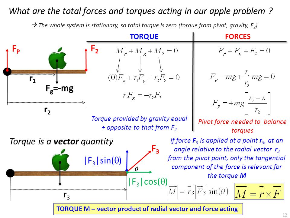 What are the total forces and torques acting in our apple problem