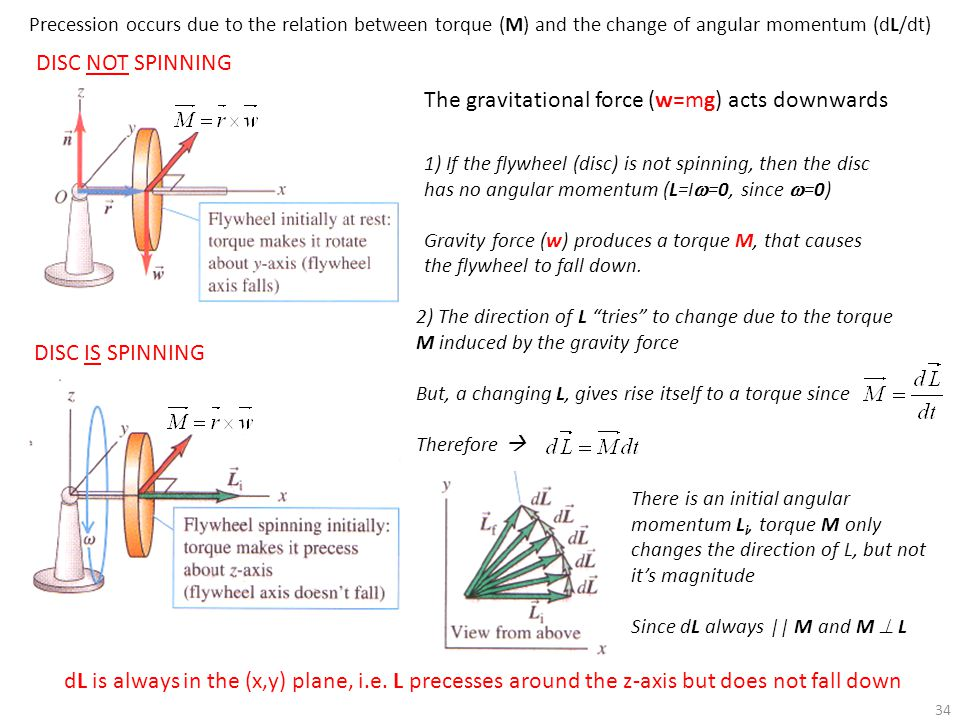 The gravitational force (w=mg) acts downwards
