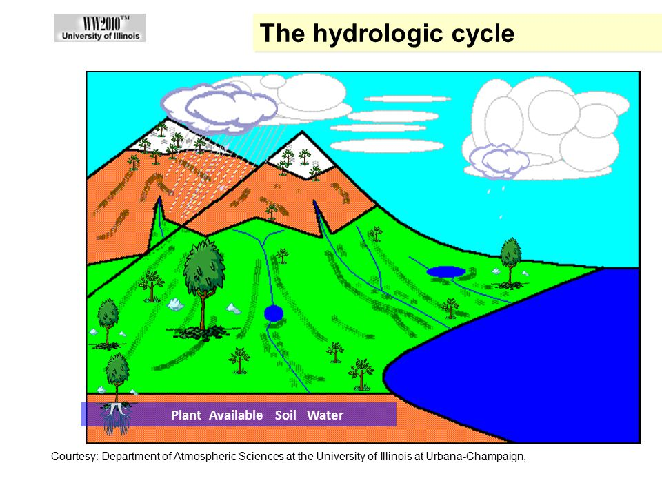 The hydrologic cycle A Summary of the Hydrologic Cycle