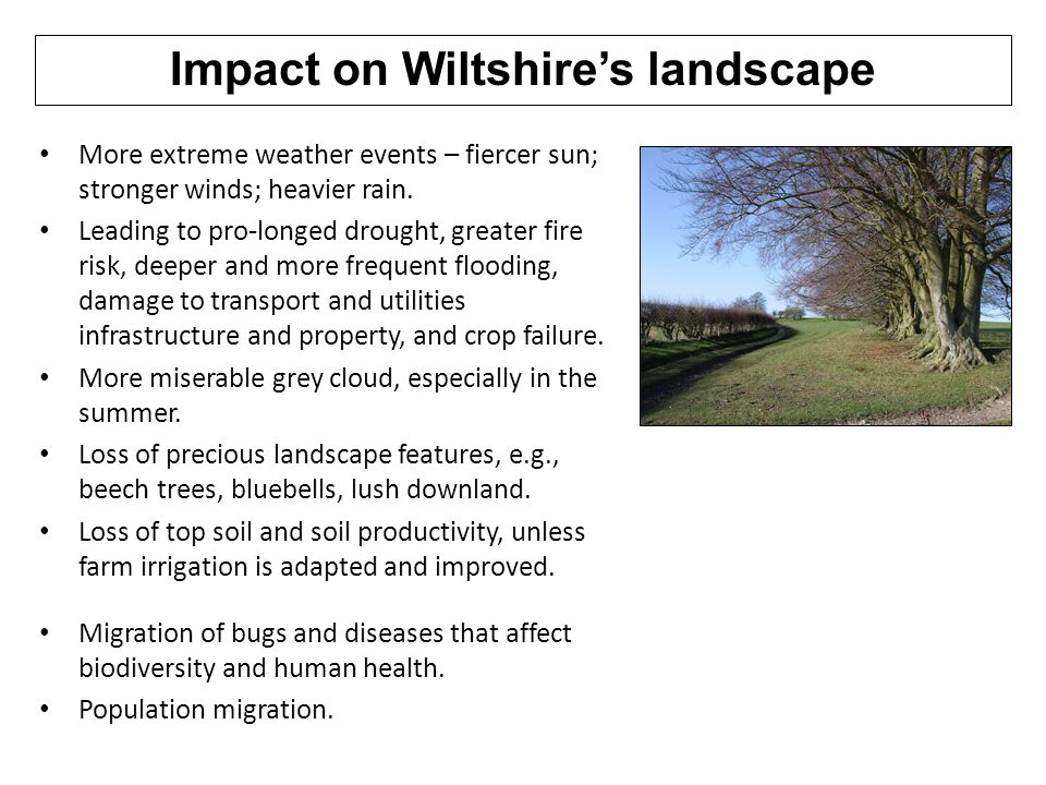 Impact on Wiltshire's landscape