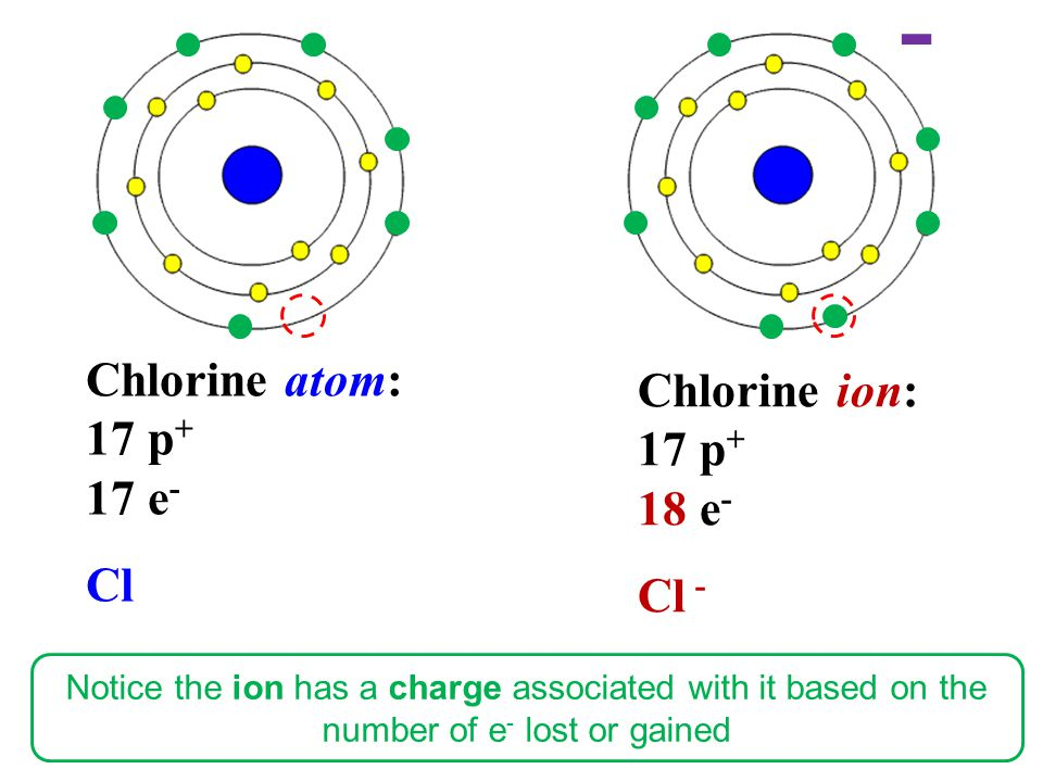 - Chlorine atom: Chlorine ion: 17 p+ 17 p+ 17 e- 18 e- Cl Cl -