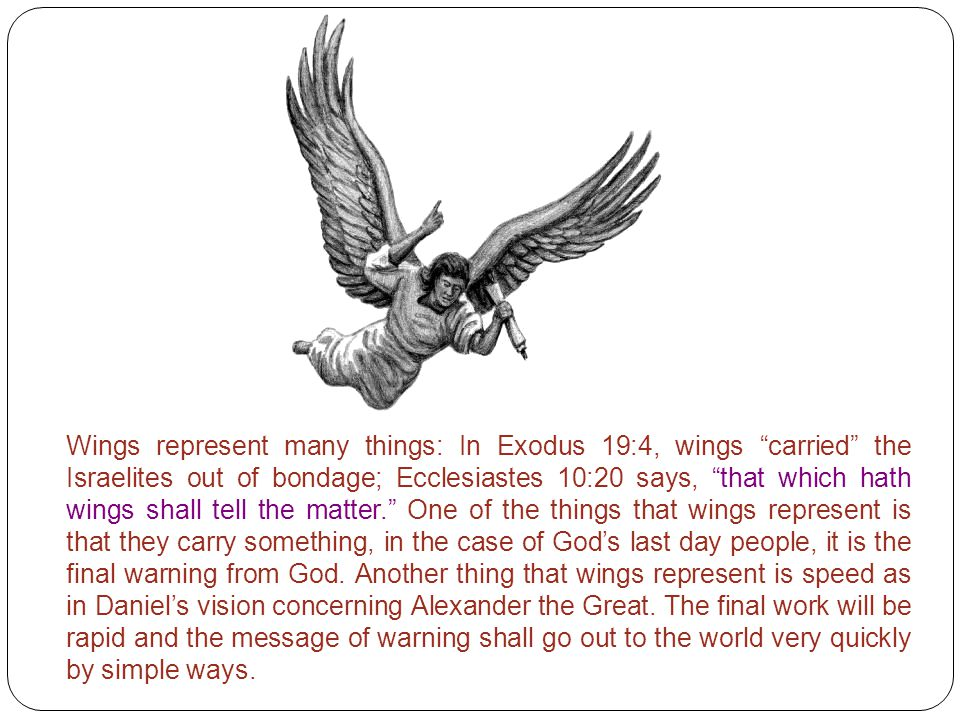 Wings represent many things: In Exodus 19:4, wings carried the Israelites out of bondage; Ecclesiastes 10:20 says, that which hath wings shall tell the matter. One of the things that wings represent is that they carry something, in the case of God's last day people, it is the final warning from God.