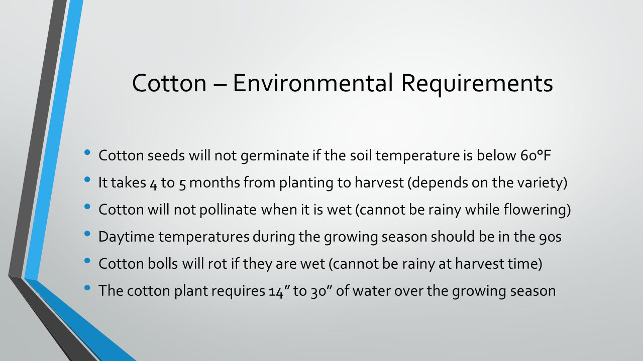 Cotton – Environmental Requirements