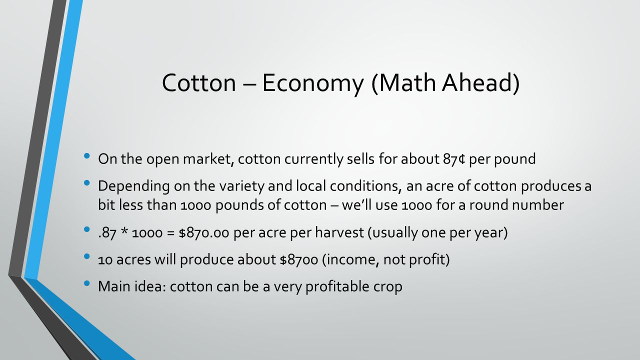 Cotton – Economy (Math Ahead)