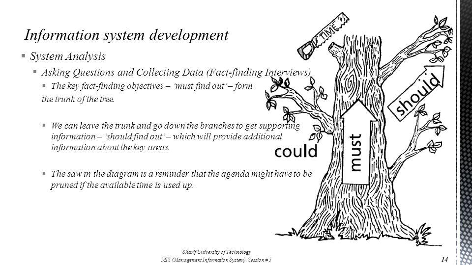 Information system development