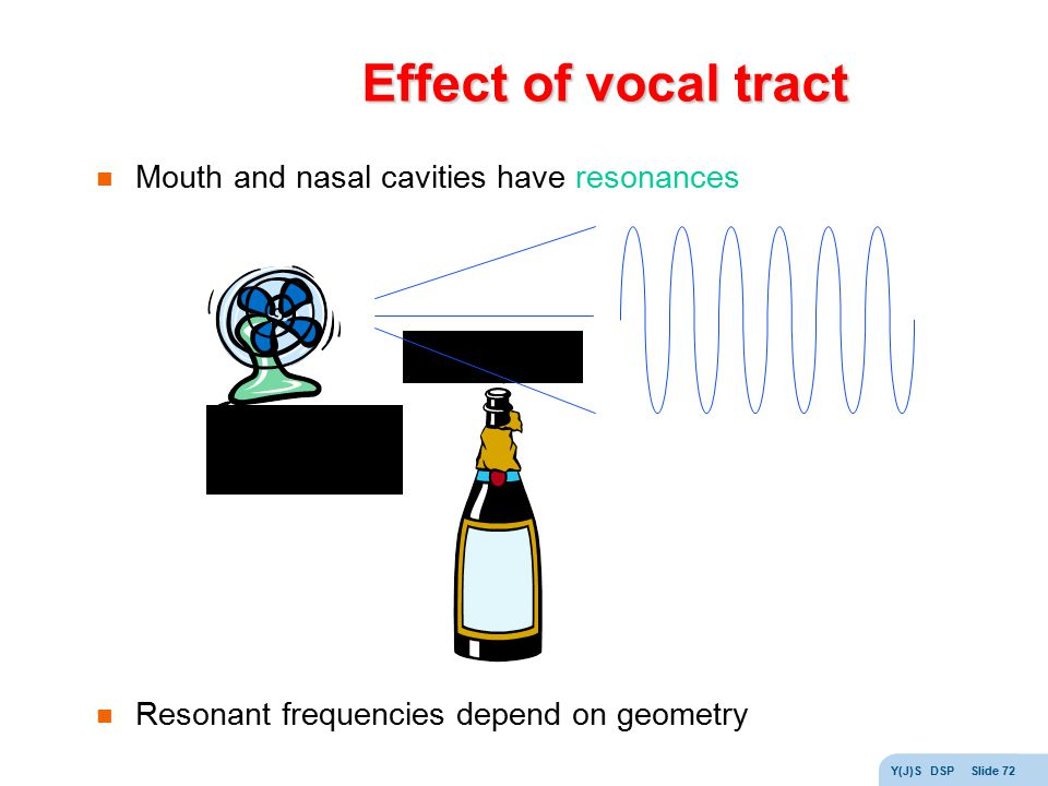 Effect of vocal tract Mouth and nasal cavities have resonances