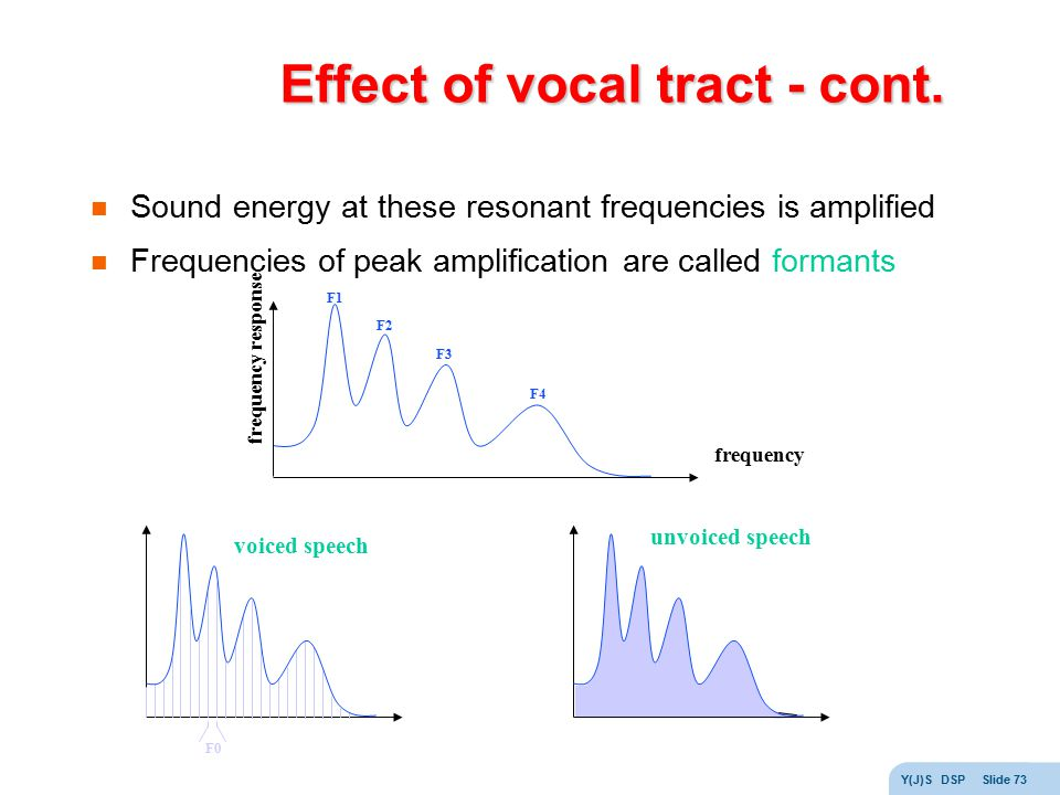 Effect of vocal tract - cont.