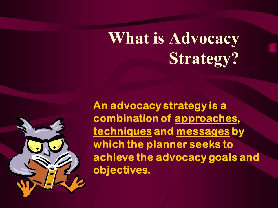 What is Advocacy Strategy