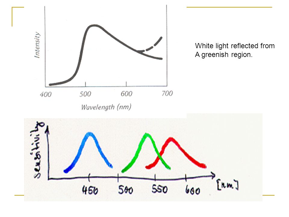 White light reflected from