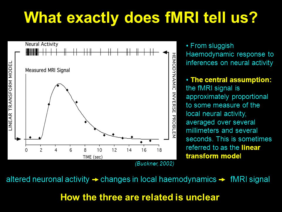 What exactly does fMRI tell us