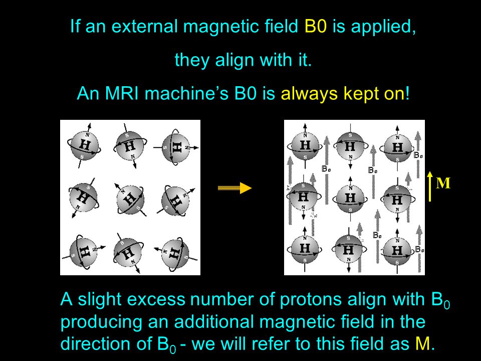 If an external magnetic field B0 is applied, they align with it.