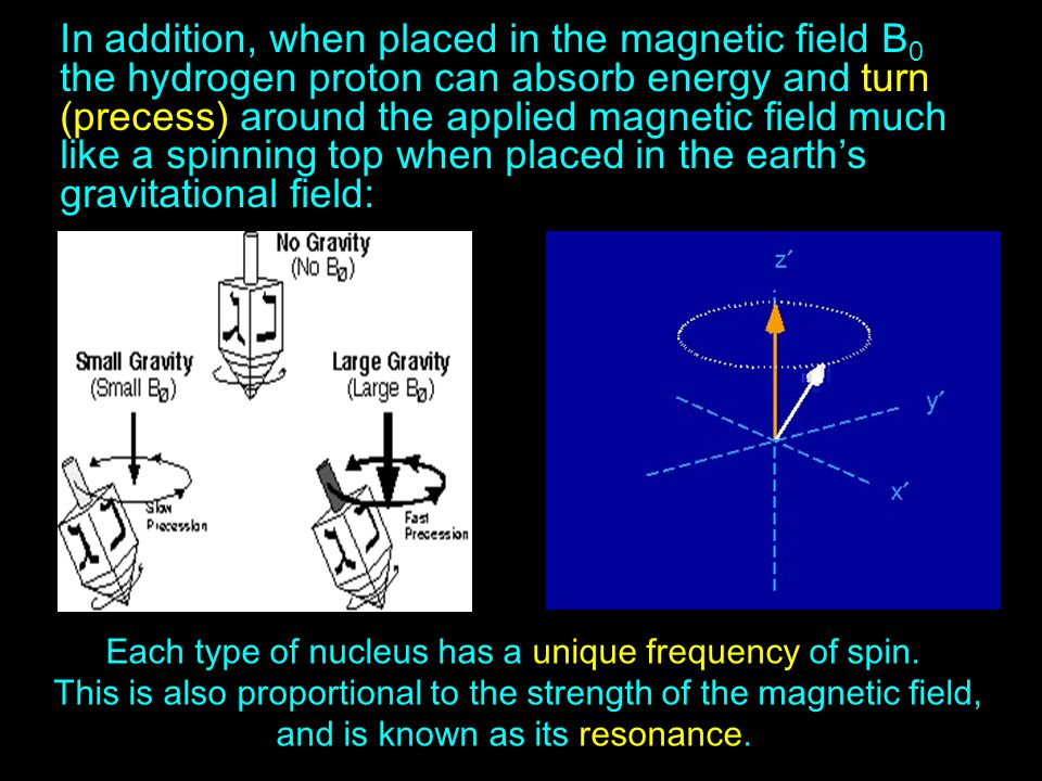 In addition, when placed in the magnetic field B0 the hydrogen proton can absorb energy and turn (precess) around the applied magnetic field much like a spinning top when placed in the earth's gravitational field: