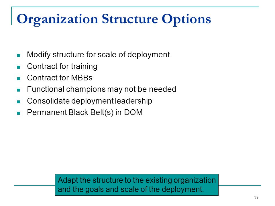 Organization Structure Options