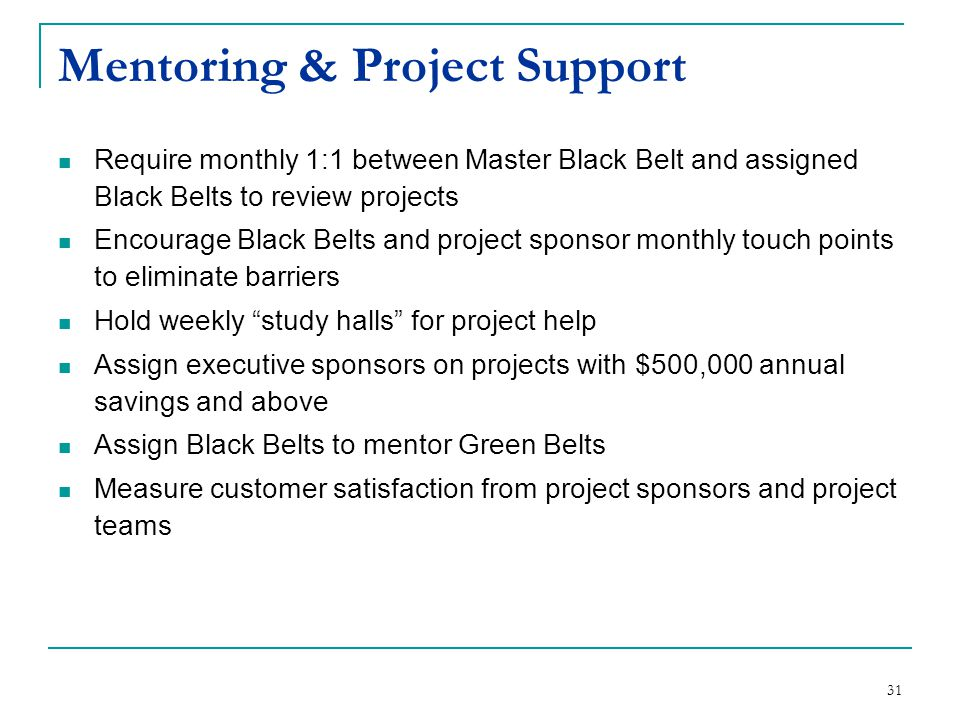 Mentoring & Project Support