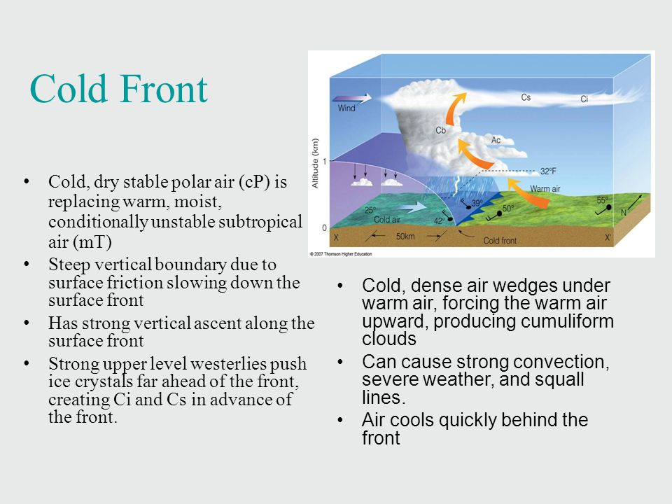 Cold Front Cold, dry stable polar air (cP) is replacing warm, moist, conditionally unstable subtropical air (mT)