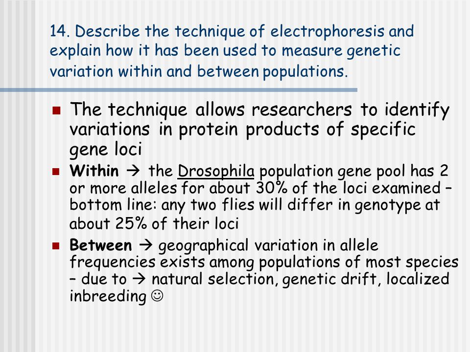 14. Describe the technique of electrophoresis and explain how it has been used to measure genetic variation within and between populations.