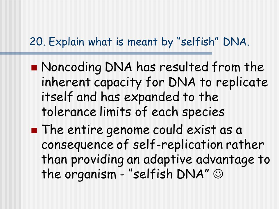 20. Explain what is meant by selfish DNA.