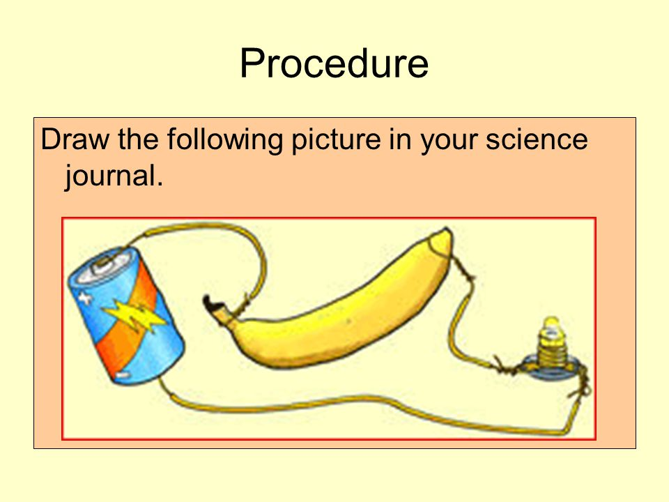 Procedure Draw the following picture in your science journal.