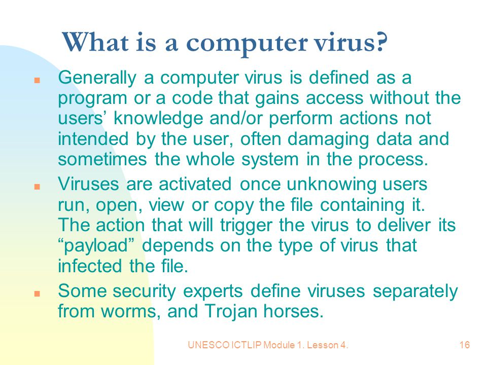 What is a computer virus
