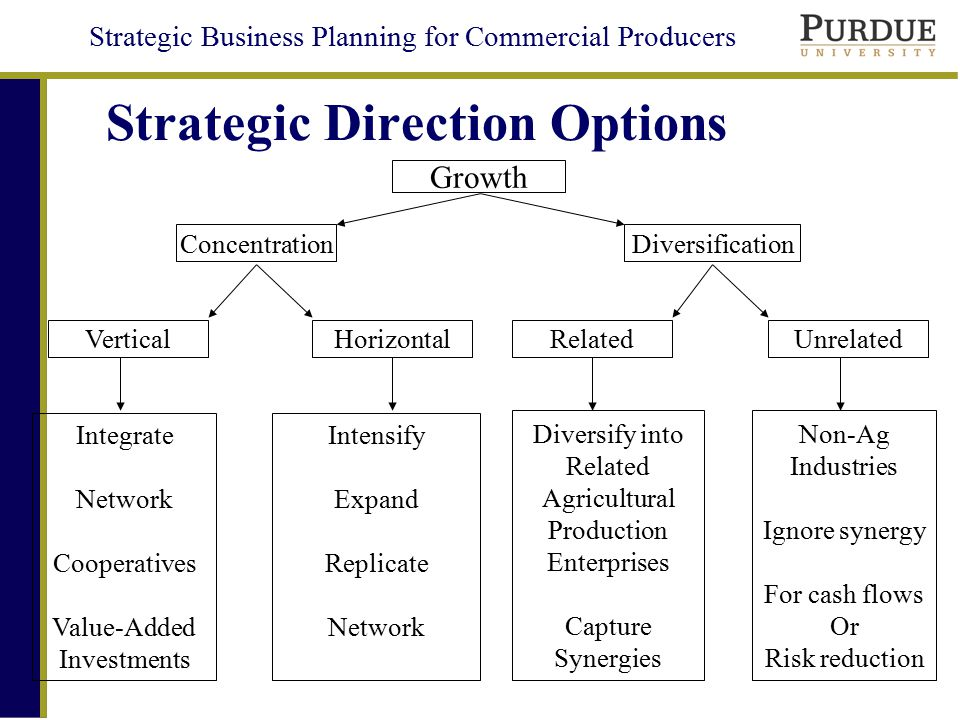 Strategic Direction Options