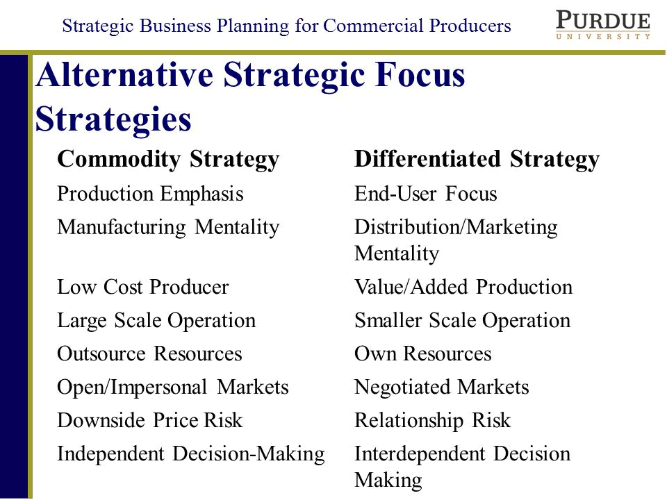 Alternative Strategic Focus Strategies