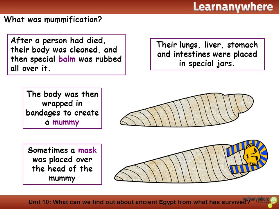 What was mummification