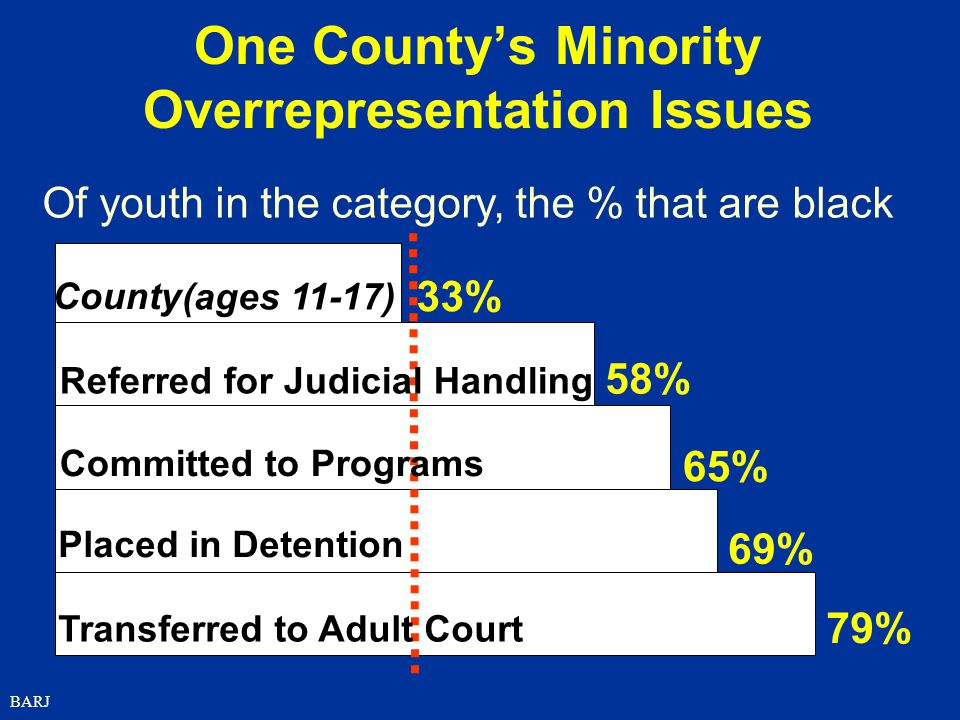 One County's Minority Overrepresentation Issues