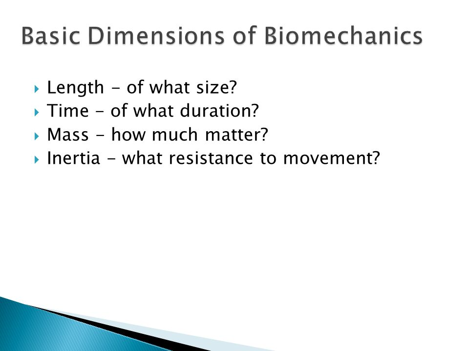 Basic Dimensions of Biomechanics