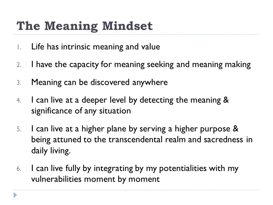 The Meaning Mindset Life has intrinsic meaning and value