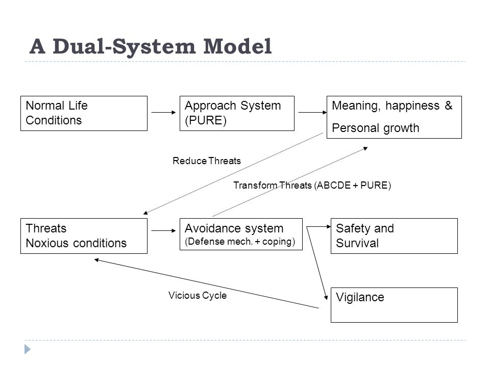 A Dual-System Model Normal Life Conditions Approach System (PURE)